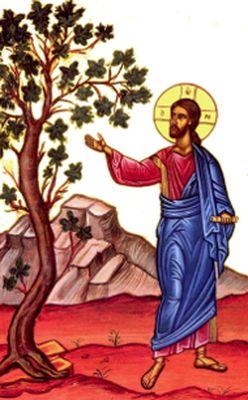 Martes Santo: ¿Cómo es nuestra fe?